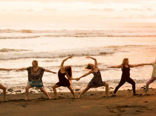 LIVE YOUR YOGA Retreat