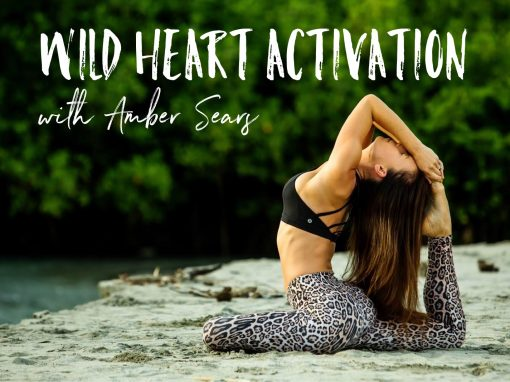 Wild Heart Activation Workshop